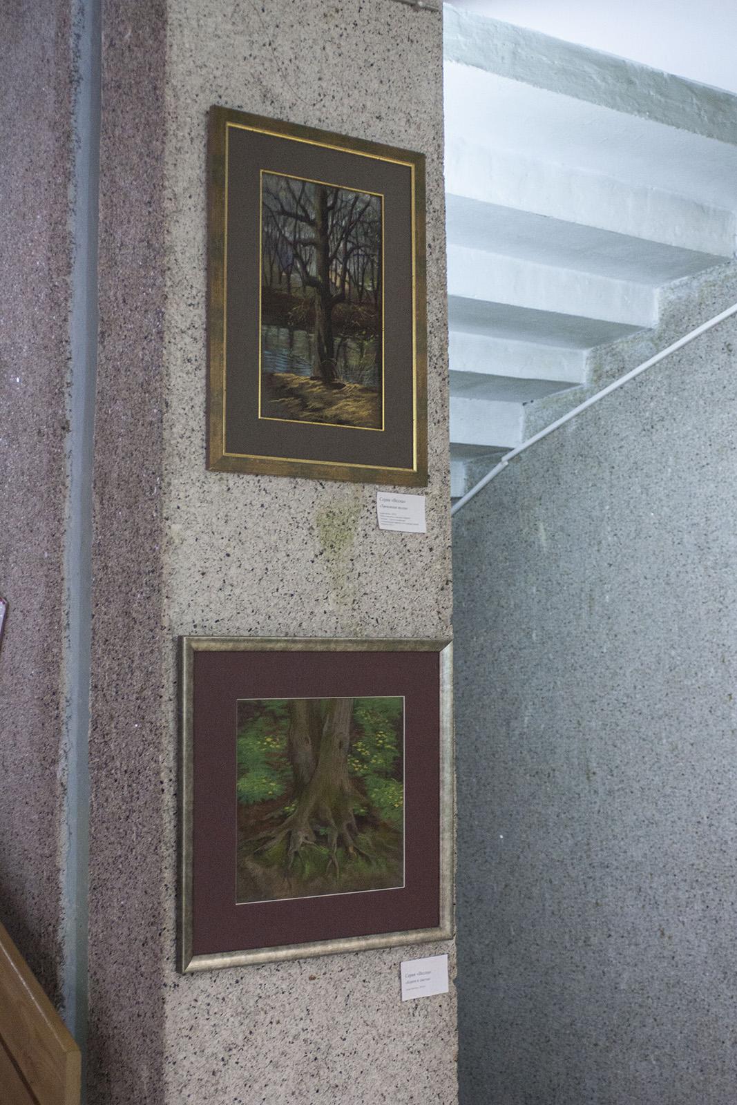 Solo art exhibition